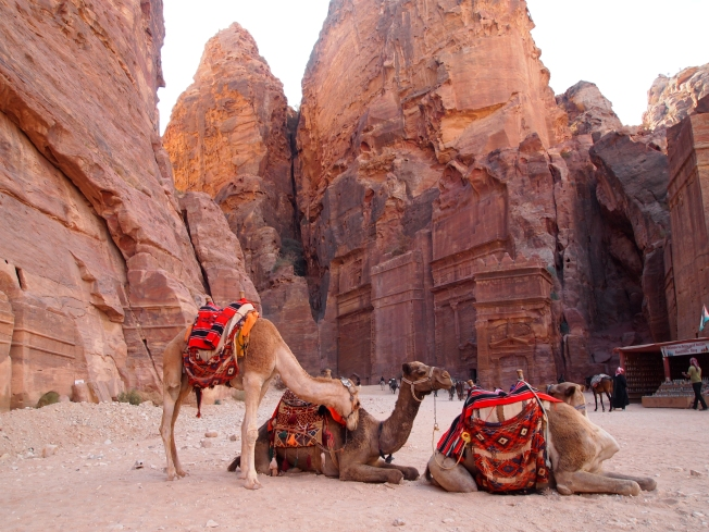 Camels and the Royal Tombs